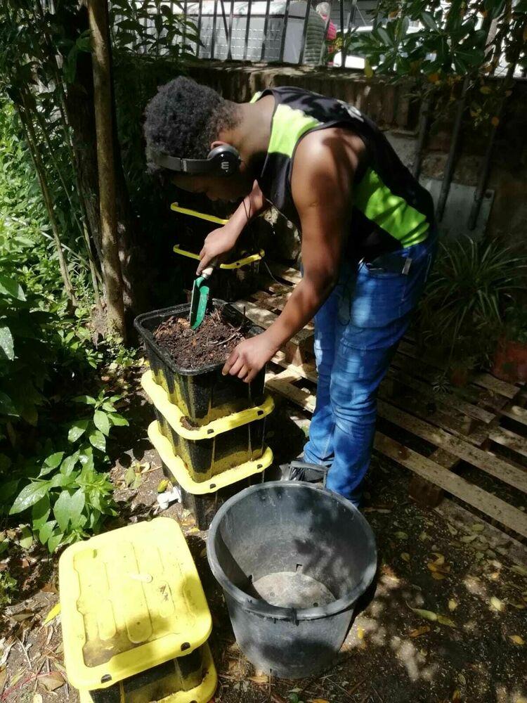 Vermicultura Comunitària